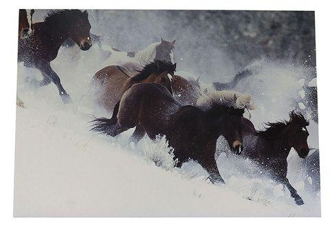 Christmas Gift Card - C74412