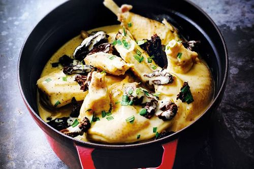 Chicken Fricassée with Morel Mushrooms
