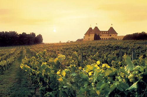 Watch JC introduce the Loire Valley