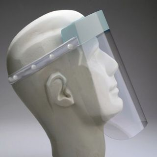 Disposable Face Shields (10)