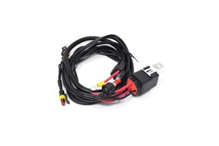 Two-lamp harness kit with switch (Regular)