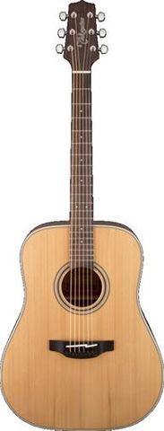 Takamine TGD20NS Dnought Acoustic Guitar