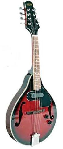 Bryden SMA50E Ac/El Mandolin