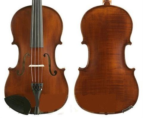 Gliga III 15.5in VIOLA Outfit