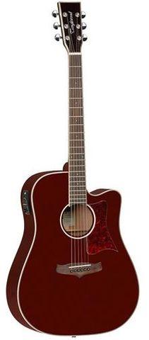 Tanglewood TW5WR Winterleaf Ac/El Guitar