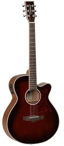 Tanglewood TW4WB Winterleaf Ac/El Guitar