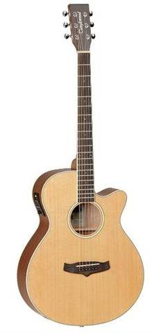 Tanglewood TW9Winterleaf Ac/El Guitar