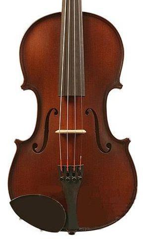 Gliga St Romani III 4/4 Violin Outfit