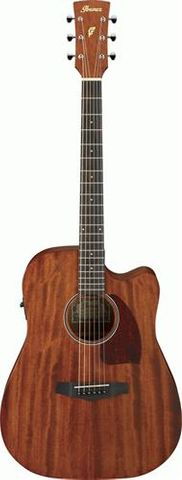 Ibanez PF12MHCE Ac/El Guitar