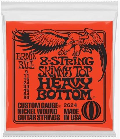 Ernie Ball 009-080 8 String Electric Gtr