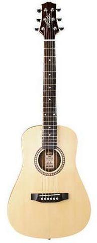 Ashton Mini20 NTM Acoustic Guitar
