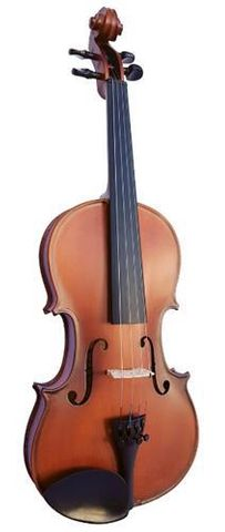 Vivo 4/4 Student 1 VIOLIN Outfit