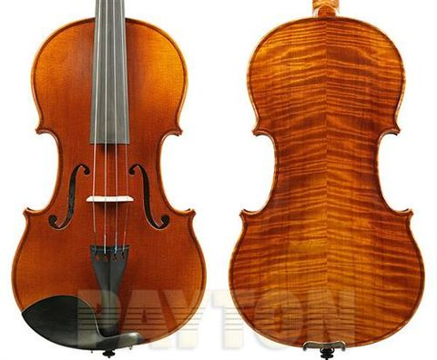 Raggetti RV9 4/4 Violin Outfit