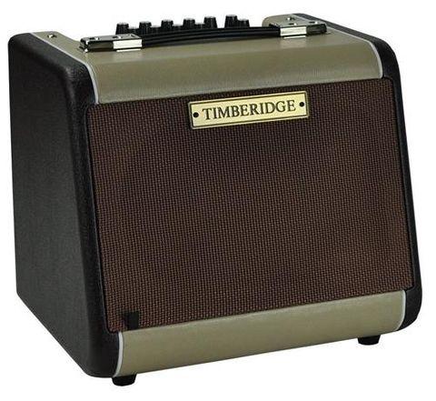 Timberidge JA60 60w Acoustic Guitar Amp