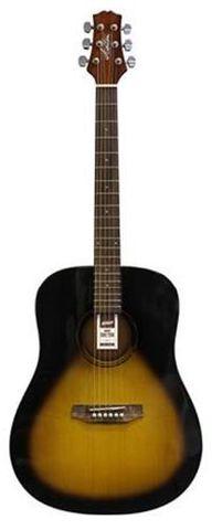 Ashton D20 TSB Acoustic Guitar