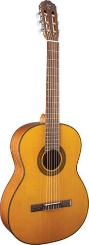 Takamine TGC1NAT Classical Guitar