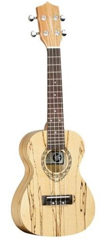 Tanglewood TWT10B Concert Uke Spalted Mp