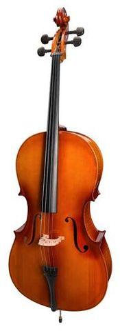 Steinhoff 3/4 NAT GLOSS Student Cello
