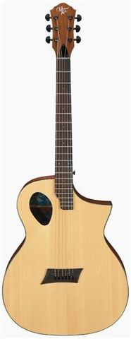 Michael Kelly Forte Port Ac/El Guitar