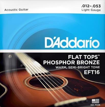 Daddario EFT16 Flat Top PB Lite Strings