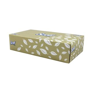 Scott Facial Tissues 100 - Carton (48)