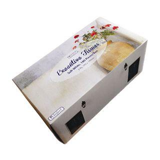 Sofeel Executive Tissues - Carton (36)