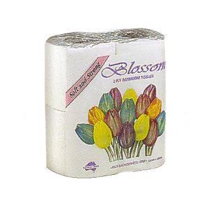 Blossom 250sh Toilet Roll x48