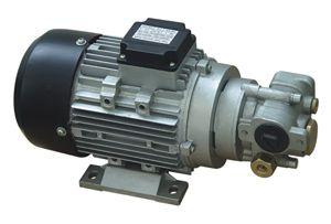 Electric Gear Oil Pump (15l/min)