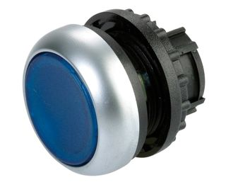 Pushbutton Illuminated Stay Put Blue
