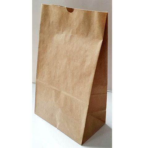 BROWN PAPER BAG #10 250P/1