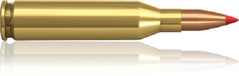 Norma 243 WIN. 58 V-MAX  (20)