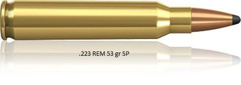 Norma 223 REM. 53  SP  (20)