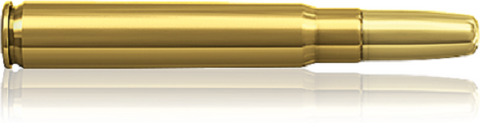 Norma 9.3X62 275gr GRAIN SOLID (10)