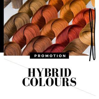 HYBRID COLOUR