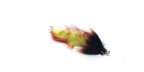 Snapper Bunnies 4/0 Waikato