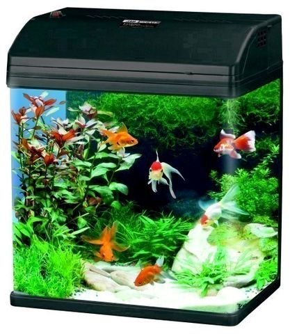 ALL IN ONE AQUARIUMS