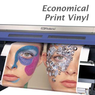 Vinyl - Economical