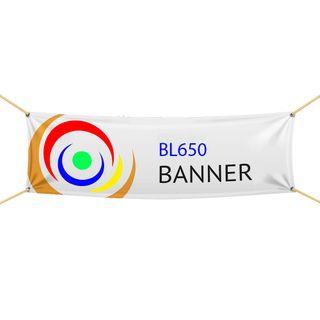 BL650 Banner