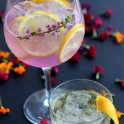 Mix fabulous cocktails with our range of barware
