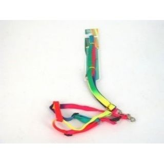 PET HARNESS RAINBOW 1.1M