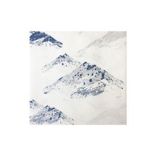 NAPKIN MOUNTAINS (3)