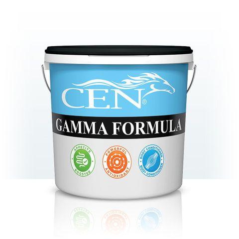CEN Gamma Formula 2lt