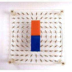 Magnetic model field 117 needles