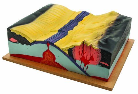 Tectonics model