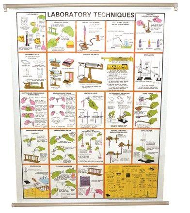 "Chart ""Laboratory Techniques"""