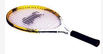 "Tennis Racquets Pro Series 21"""