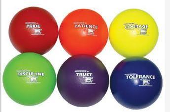 Gator Foam Balls 210mm Core Values Set:2