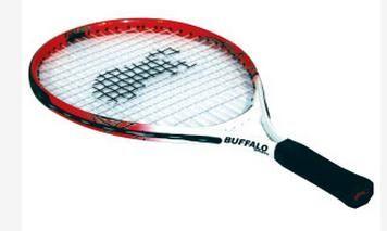 "Tennis Racquets Pro Series 19"""