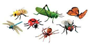 Jumbo Insects set of 7