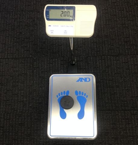 Scale personal 220kg x 0.02kg
